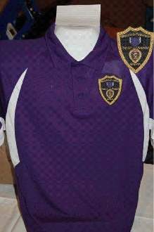 MOPH Purple & White Polyester Polo Shirt